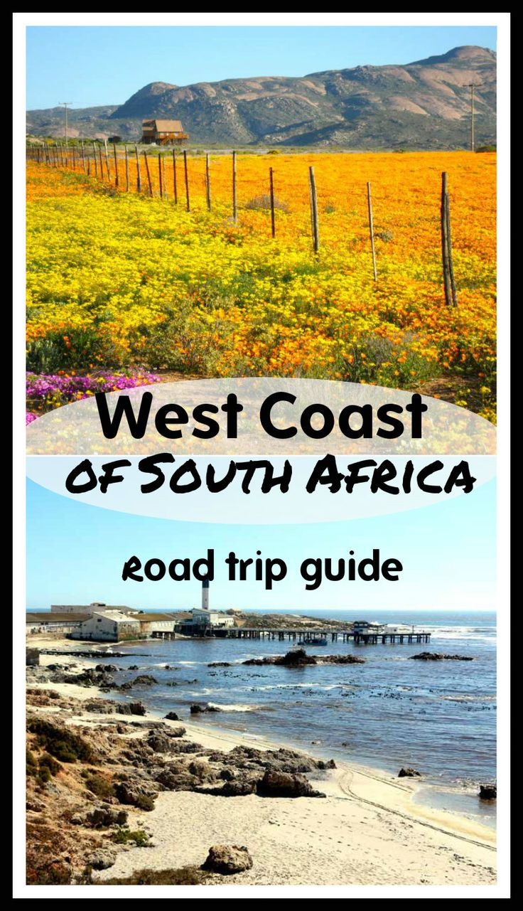 Ultimate guide to a road trip along West Coast of South Africa