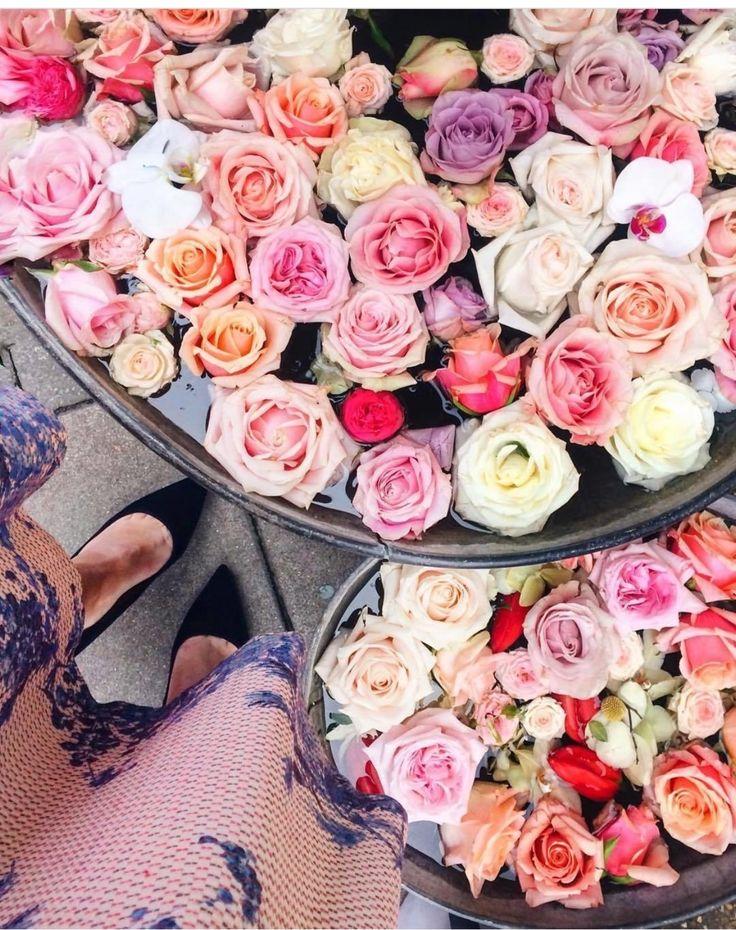 Weekend blooms.