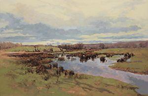 Rush Meadow by Sean McCann in the FASO Daily Art Show