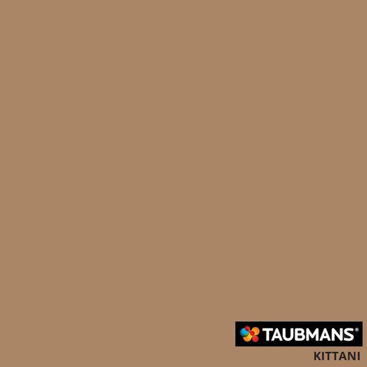 #Taubmanscolour #kittani