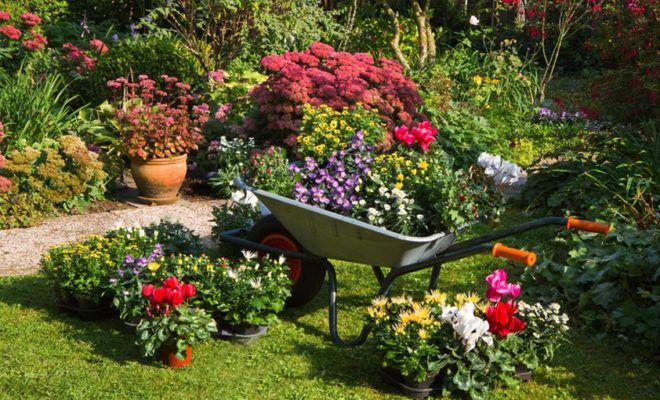 5 vychytávek pro chytrého zahradníka - HomeInCube