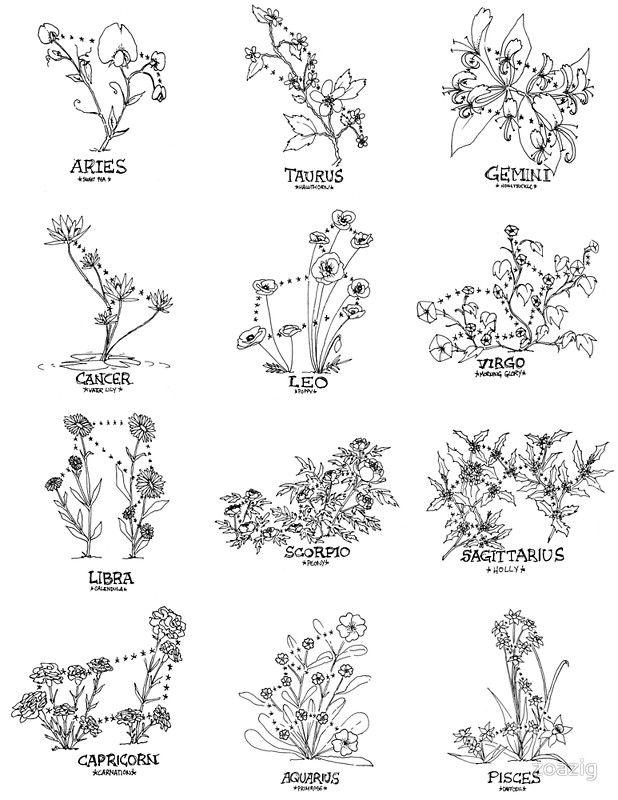 """""""Floral Constellation – Ensemble"""" Poster von zoazig"""