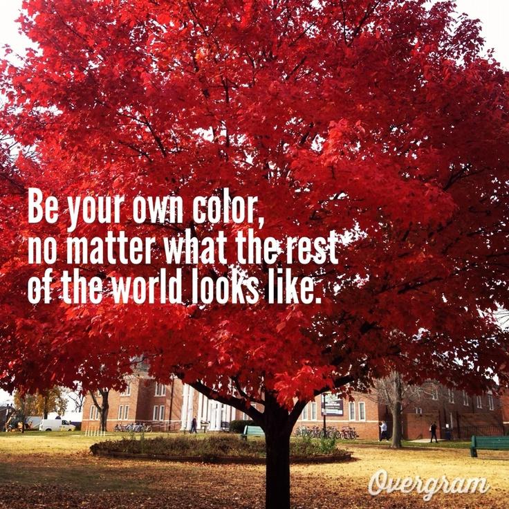 25 Best Autumn Quotes Images On Pinterest