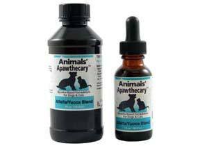 Acetaminophen Dogs Cats Dangerous