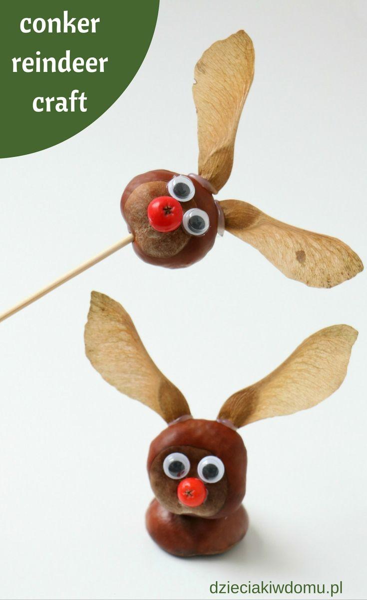 conker/ horse chestnut reindeer craft for kids