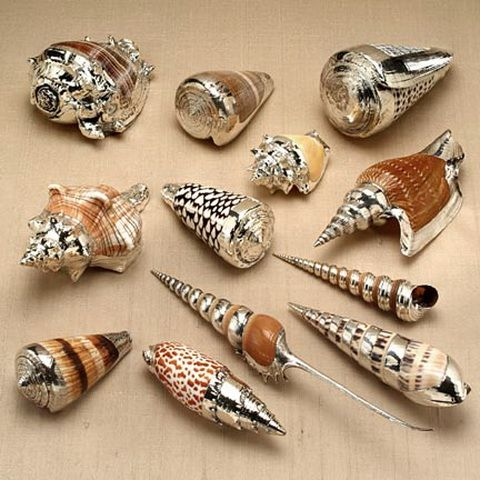 DIY expensive-looking shell decor - use chrome spray paint on seashells