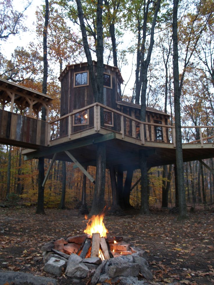 Interview With A Tree House Master: Roderick Romero Builds Around The World