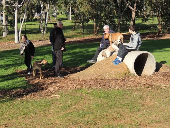 dog parks, south of adelaide, playground in, a playground, playground for children, park in adelaide, play equipment, exercise equipment, cc...