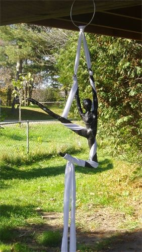 Darkstar ariel acrobat : from Private collection