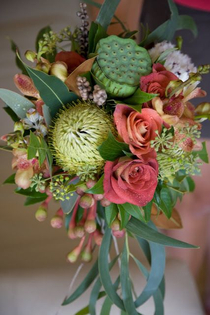 australian wedding flowers | Bouquet of native australian flowers, foliages and nuts, leonardis ...
