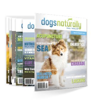 Dedicated to ethics and integrity in every aspect of our publications and courses, Dogs Naturally is your complete resource for natural canine health care.