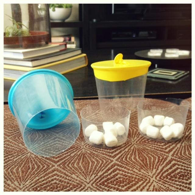 Marshmallow Launchers Children S Program Ideas