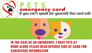Win a Pets Care Card!!  Pets Emergency Card Like and share and comment with a picture of your Pets to Win!!!  Competition ends March 31st 2016 Ensure your pets are taken care of if something should happen to you or your home. By alerting officials with pet emergency wallet cards, you're ensuring family members and friends are contacted quickly. https://www.facebook.com/Pet-Care-Cards-202066750151788/