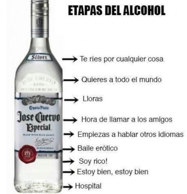 Etapas de la borrachera                                                                                                                                                                                 Más