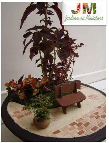 jardines en miniatura con plantas naturales