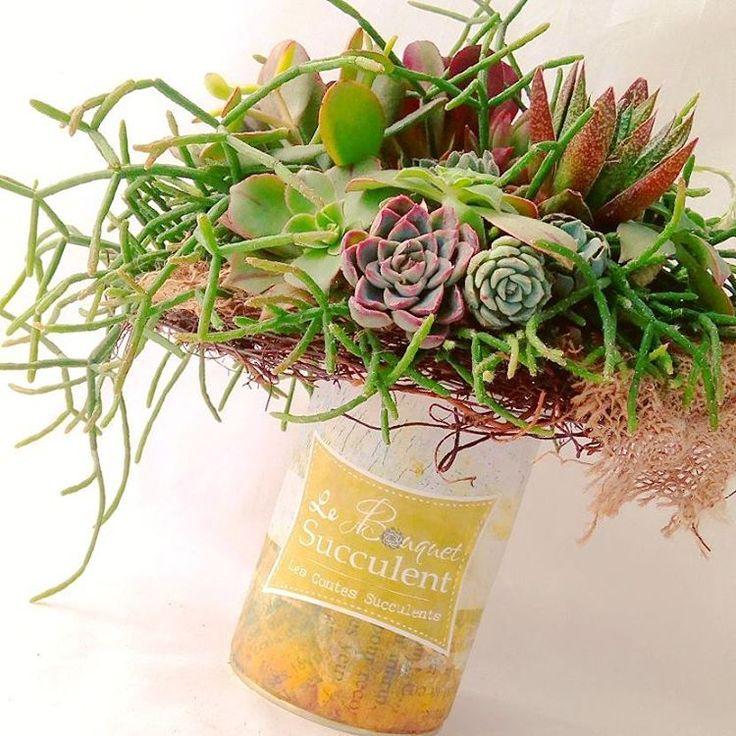 Un Bouquet Succulent - Rhipsalis & Co ! Wedding, mariage, idée déco.