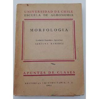 Paraíso del Libro Usado: Morfología, apuntes de Clases Universidad de Chile...