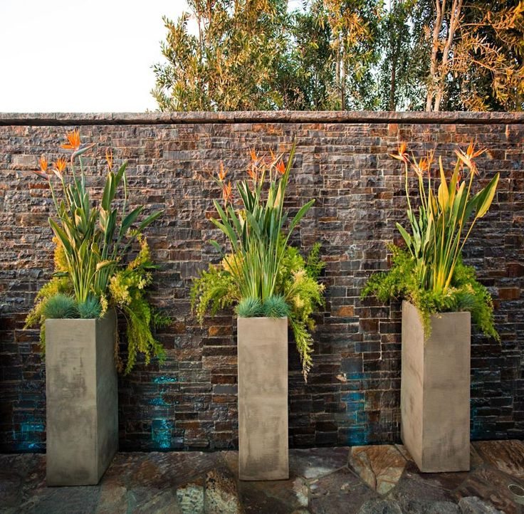 Just love the water coursing down this wall! The pots in front, planted with birds of paradise (available from Eye of the Day Garden Center in Carpinteria, CA), bring some modern flair.