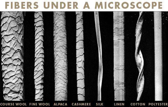 wool fibers under a microscope
