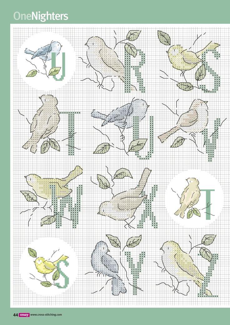 Alphabet with birds R-Z