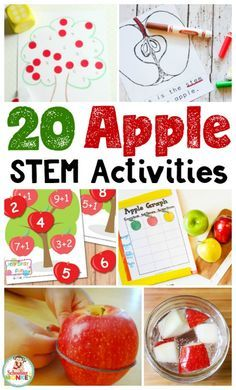 Looking for creative STEM activities? These apple STEM activities teach STEM skills while celebrating apples! Perfect for kindergarten STEM activities.