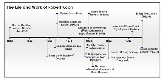 Koch timeline | Second Industrial Revolution and the New Science ...