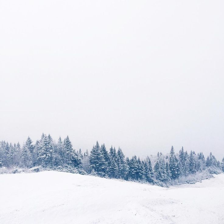 1000 images about winter wonderland on pinterest stylish winter