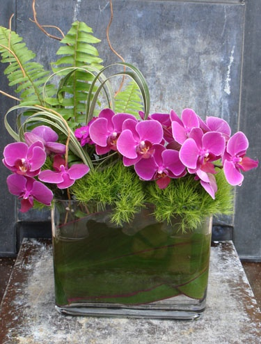 beautiful arrangement with pink phalaenopsis orchids