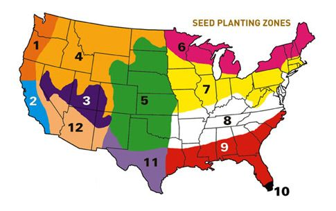 When to sew grass seed and what types to plant for your area. Really great site!!!!!