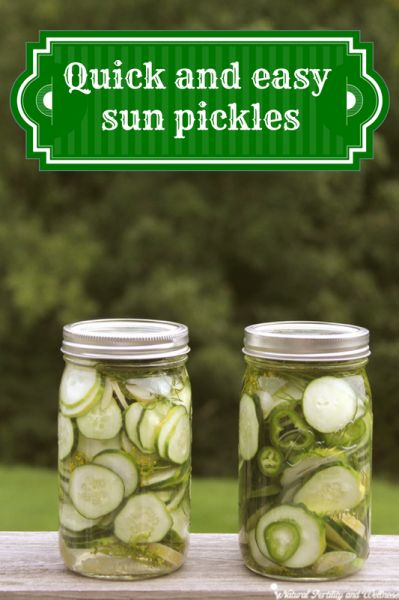 Quick and easy dill sun pickles  6½ cups water 3¼ cups white vinegar ⅔ cup canning salt (available on Amazon) 4-6 cloves of garlic (you can add more if you really like garlic – I do about 3 cloves per jar) about 10 medium pickling cucumbers fresh dill, about 8-10 heads optional – jalapeno or onion slices