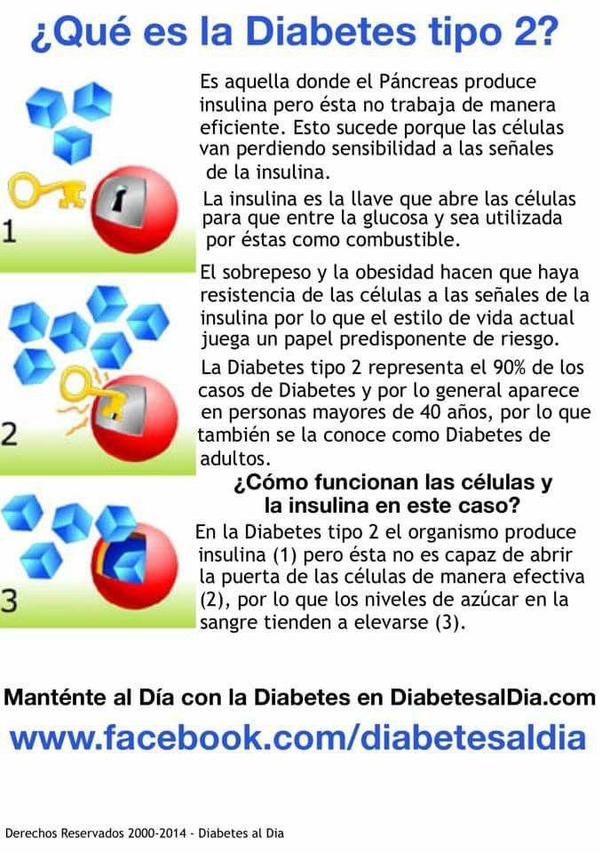 31 best MyPlate in Spanish images on Pinterest   Diet