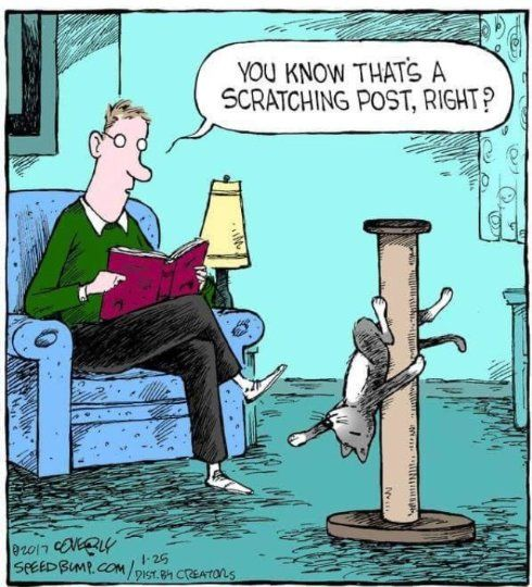 Goodreads | Lorelei James's Blog - Friday Funny #299 - February 03, 2017 09:19