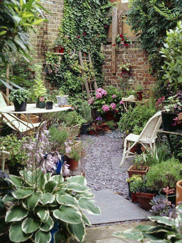 Urban garden, London   Courtyard gardens design, Small ...