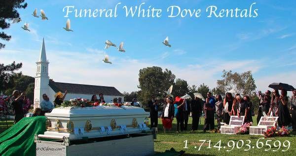 https://OCdoves.com Forest Lawn Memorial Park, Cypress, California