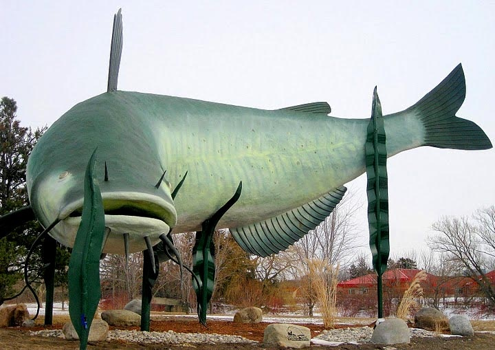 Muddy the Mudcat, the 50-foot long, 27-foot high catfish that helped put the town of Dunnville, Ontario, on the map.