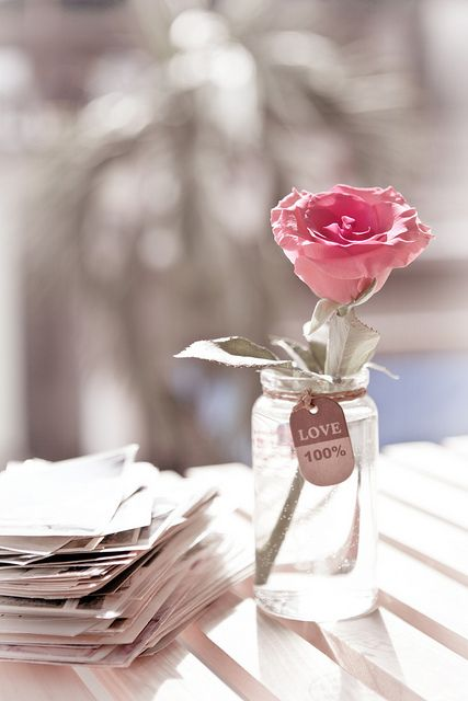 A rose for you with love
