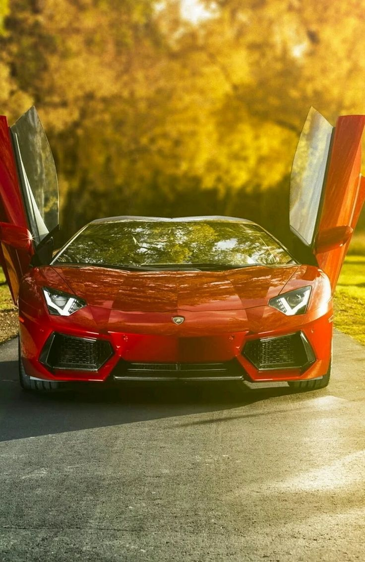 Lamborghini Aventador - one thing on my bucket list since I was 21!!!  I fear I will never own one, but I can still admire them! ♥♥ (Mine would be purple!!)