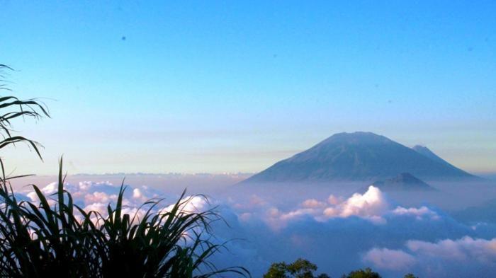 📍Mount Merbabu, Central Java Indonesia. 3142 Mdpl🇮🇩