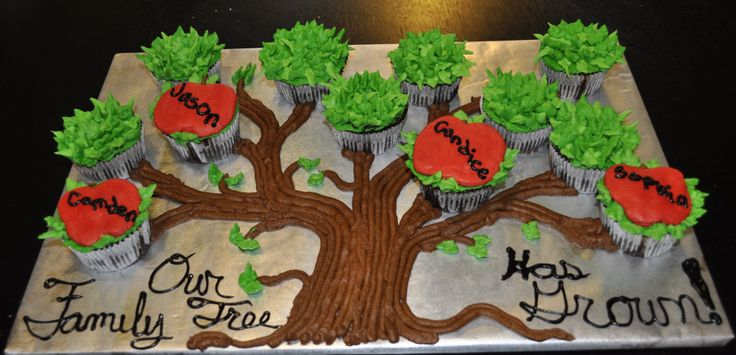 - Family tree cupcake cake for a family who had just adopted.