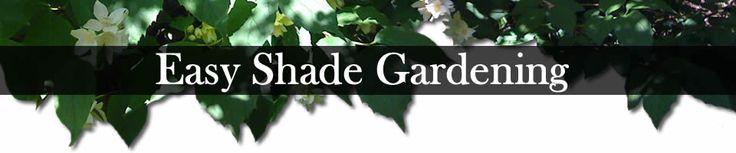 Easy Shade Gardening