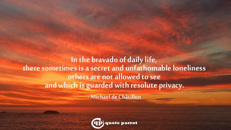 In the bravado of daily life, there sometimes is a secret and unfathomable loneliness others are not allowed to see and which is guarded with resolute privacy. - Michael de Châtillon