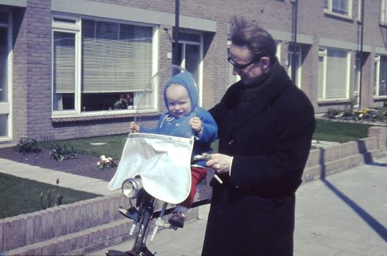Na Holanda, pais levam seus bebês para andar de bicicleta