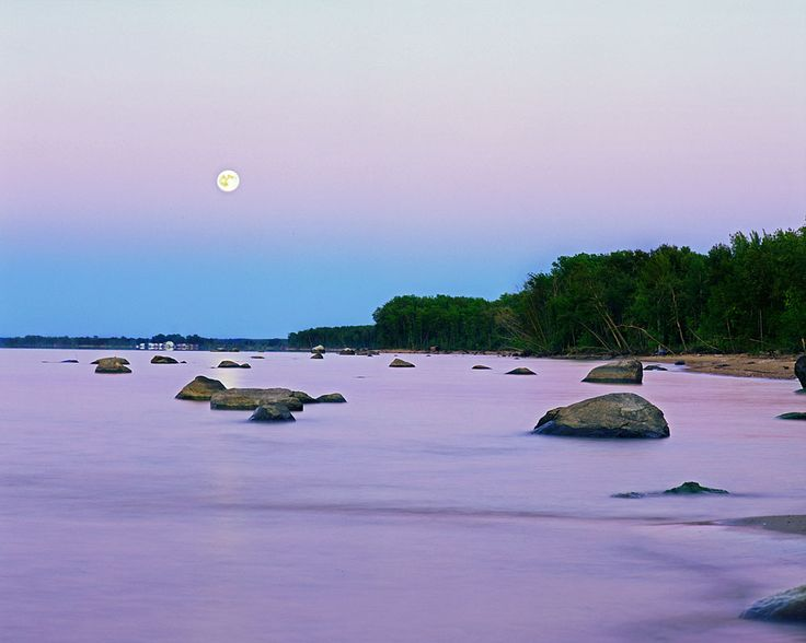 17 best images about lake of the woods mn on pinterest for Lake of the woods fishing forum