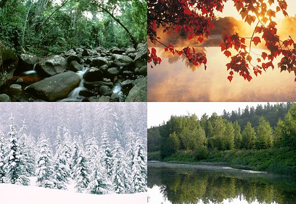 Neljä vuodenaikaa