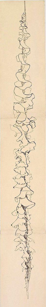 Ellsworth Kelly,  fijne lijn, illustratieve.