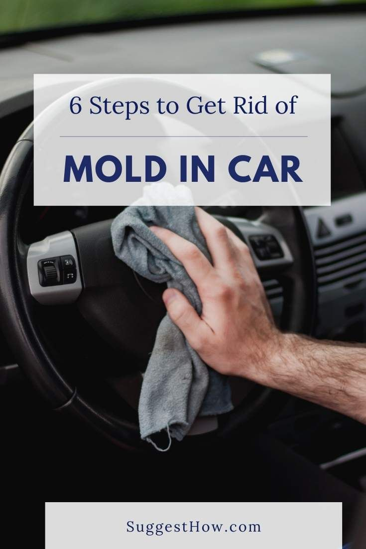How To Get Rid Of Toxic New Car Smell