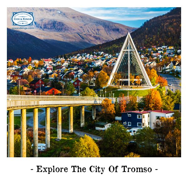 Ride a cable car to the top of the mountain, enjoy a scrumptious open-face sandwich and get a sneak a peek into Norwegian life at the Polar and Tromso Museums. Find perfection in simplicity at Norway's largest northern city! http://www.cnk.com/NorwayGAdv #ExploreFourCorners
