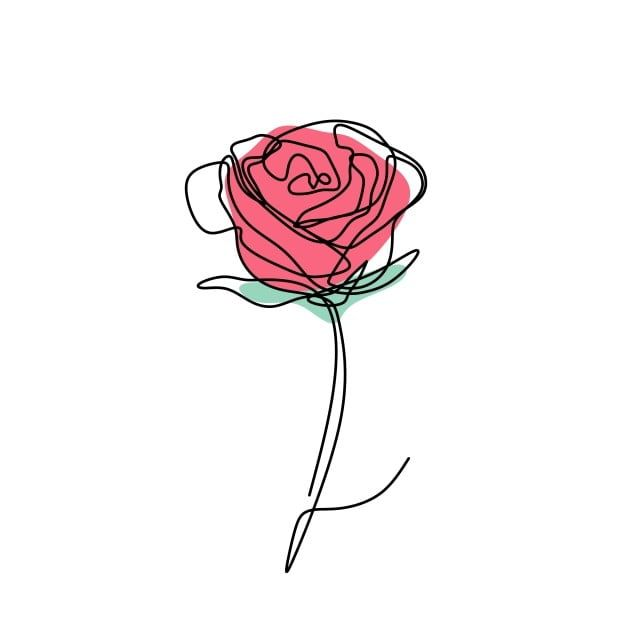 Continuous Line Drawing Of Rose Flower Vector Plant White Floral Png And Vector With Transparent Background For Free Download In 2020 Continuous Line Drawing Rose Drawing Roses Drawing