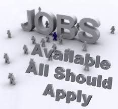 High paying #freelancing @jobs square measure mentioned with helpful websites. In #Freelancer #jobs ,where you willl realize the varied #jobs oppourtunity in #home.