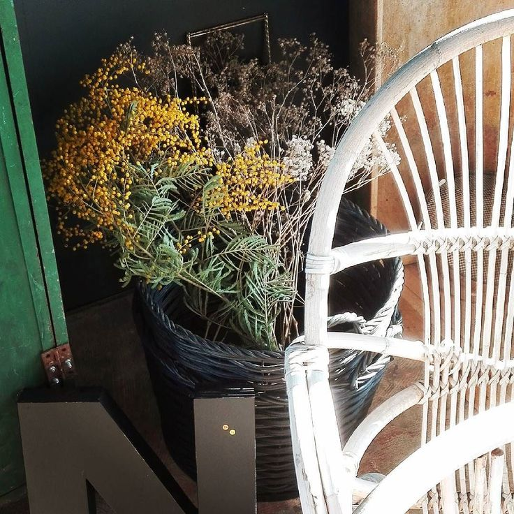 On dirait le sud chez mon amie Karine @parenthese_vintage C'était dimanche aux @pucesducanal #fleamarketstyle #fleamarket #pucesducanallyon #chinerauxpuces #southinspiration #rotin #white #mimosas #igerflowers #brocante #mercipourladresse #waitingforspring